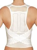 Rücken-+Taillenstützgürtel Geradeh.