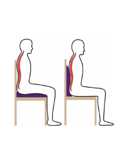 2 in1-Sitz- und Rückenkissen Blau Detail 2